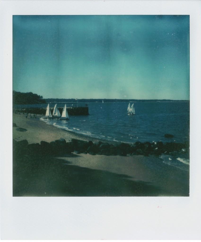 Polaroid image by Carla Triolo