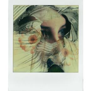 Polaroid veil