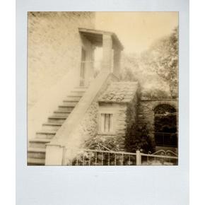 Монохромный Polaroid